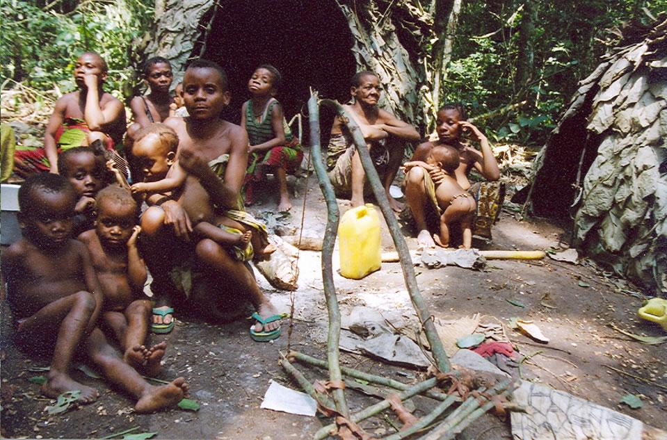 Сексуальная жизнь пигмеев африки